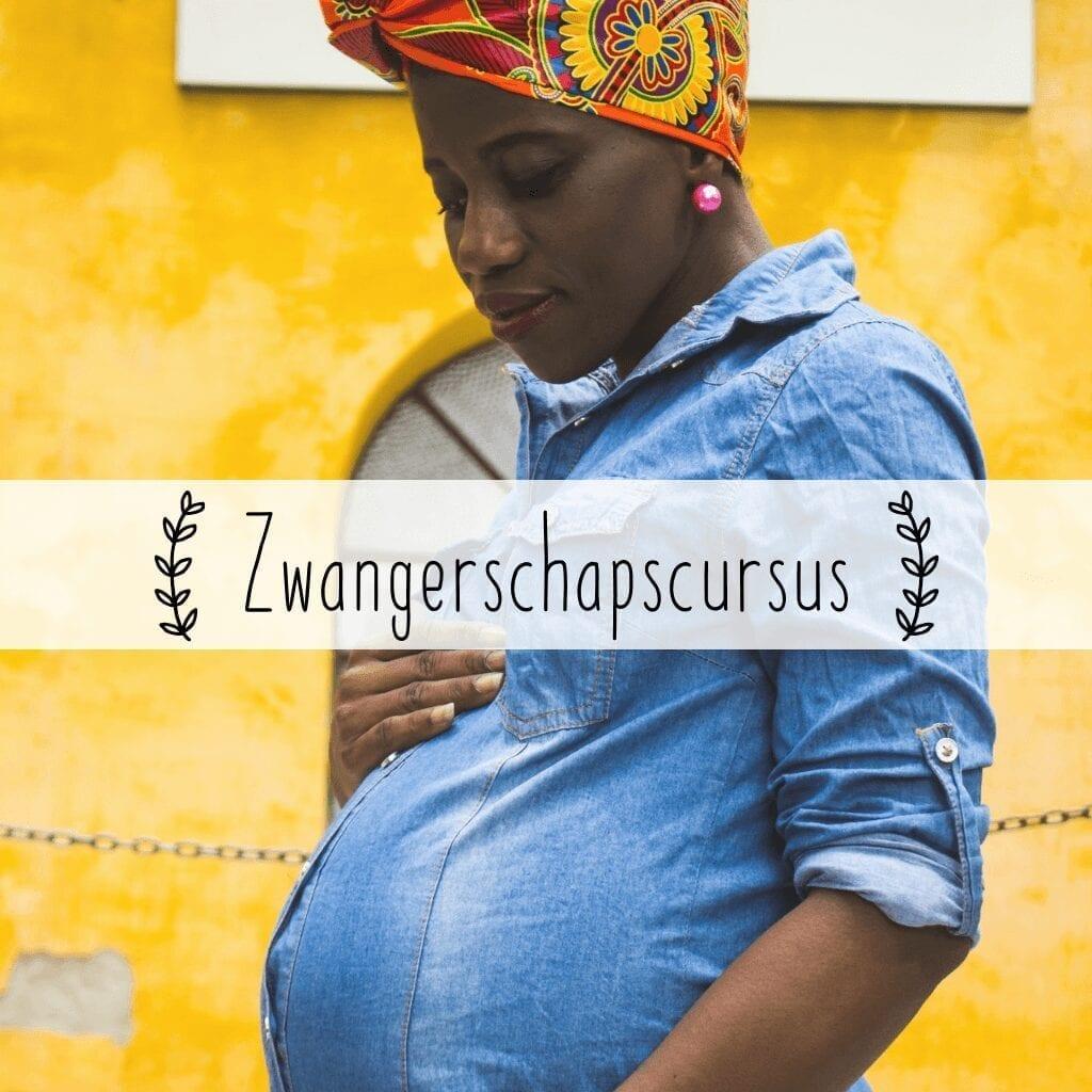 zwangerschapscursus drsmama
