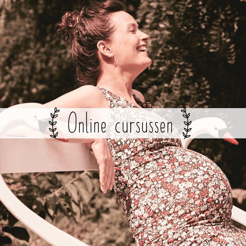 online zwangerschapscursussen drsmama